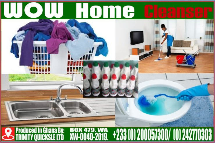 WOW-HOME-CLEANSER-SALES-4.5-BY-3.0-Copy